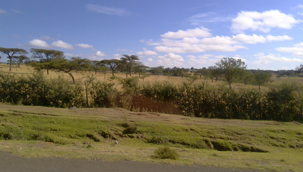 アフリカの風景2