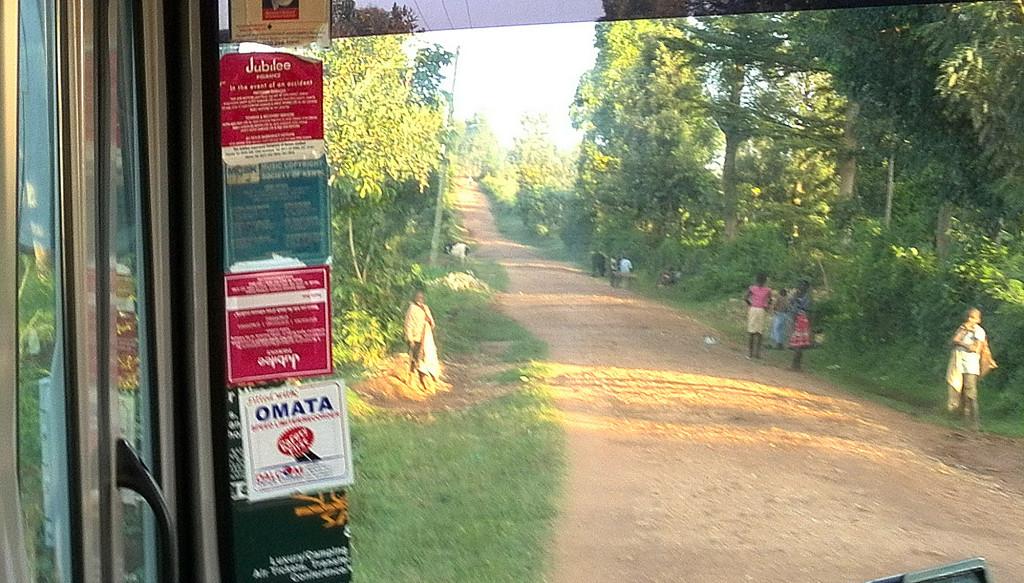 ゲムイースト村へ向かう道2